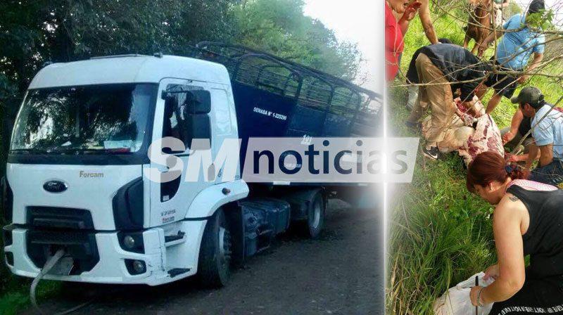 Volcó un camión con ganado y vecinos faenaron una vaca