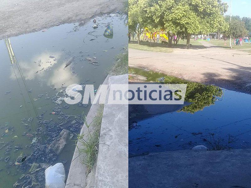 Los niños de José C. Paz conviven con excremento frente a una plaza y a una escuela