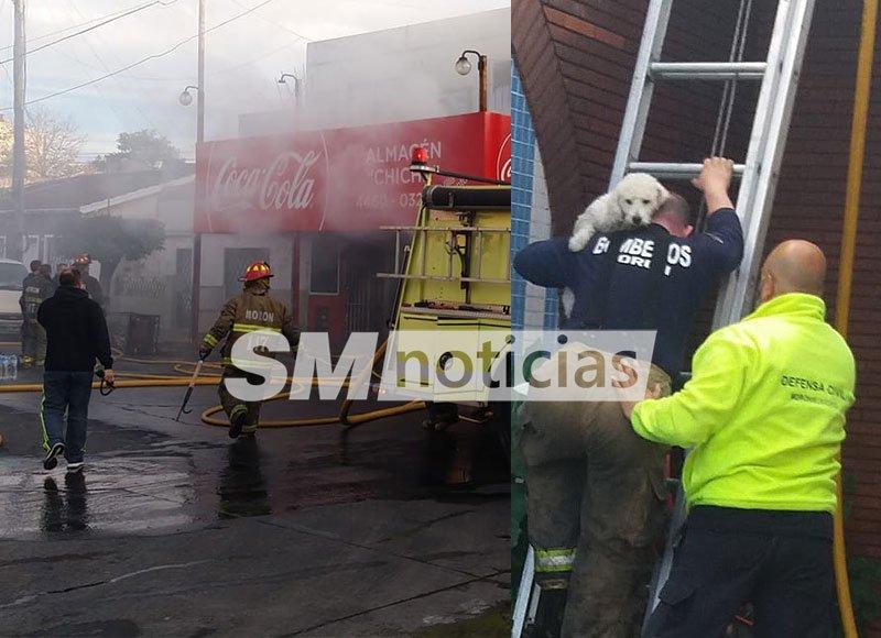 """Se incendió """"el almacén de Chiche"""" y los bomberos rescataron a su perro"""