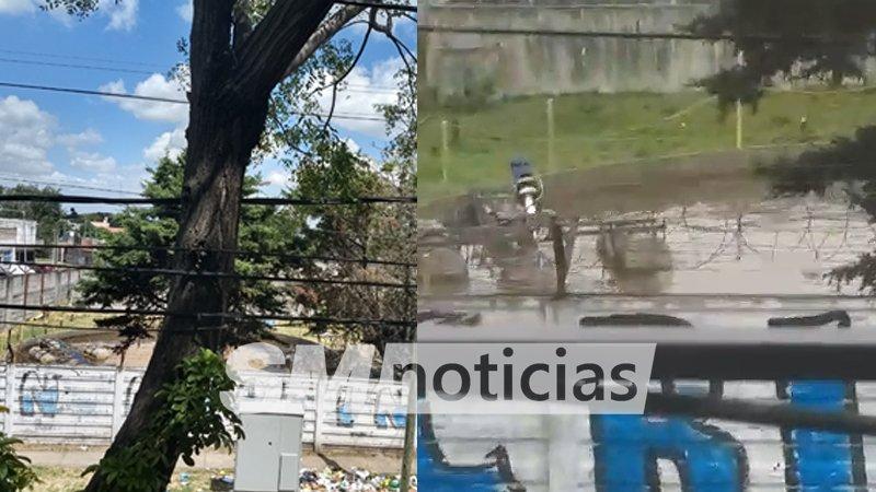 Denuncian olores nauseabundos de la planta Bonafide de San Martín